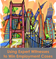 2017-08-10_using-expert-witnesses_title